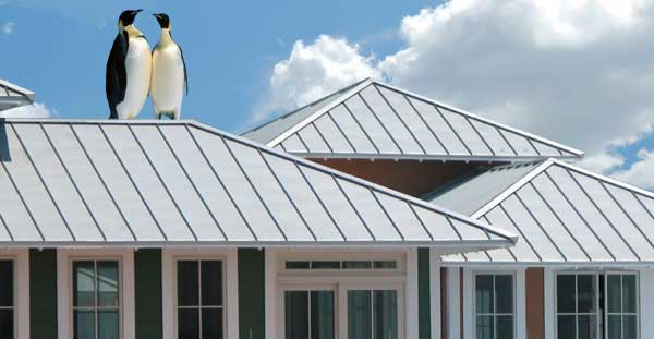 Kool energy efficient roofing metals for Energy efficient roofing material